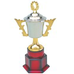 Golden and Silver Cup Trophy