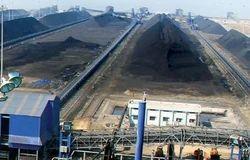 Coal Logistics Service