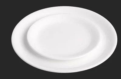 Acrylic Dinner Plate & Acrylic Dinner Plate at Rs 73 /piece | Dinner Plates | ID: 11656886948