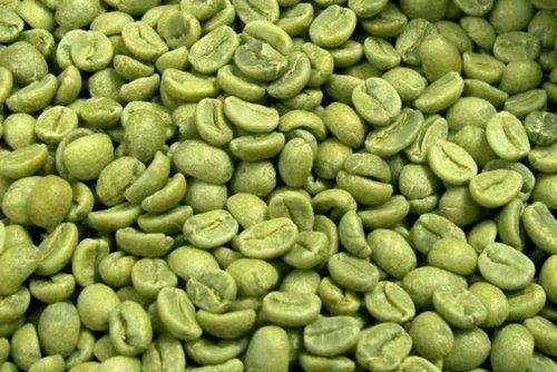 Green Coffee Beans Pack Size 1kg Rs 800 Kilogram Excellent