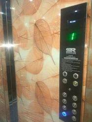 Desine auto lift