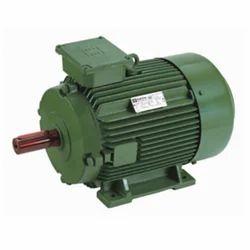 5 Hp Electric Motor >> Hindustan 3 7kw 5hp 1440 Rpm 4p Foot Mount Motors