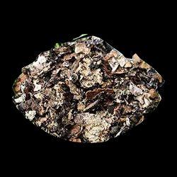 Black Stone Flower - Kalpasi Suppliers, Traders ... Black Stone Flower