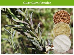 Guar Gum Powder As Chemical Auxiliary Agent