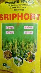 Sriphort Seed