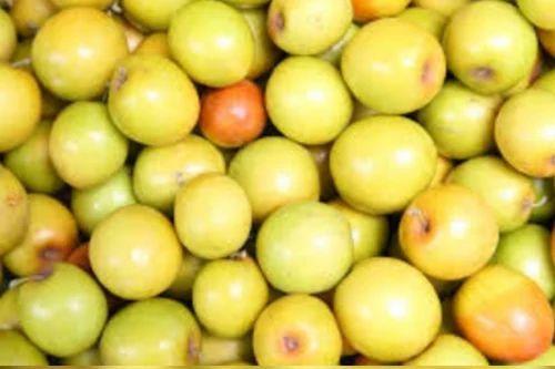 Ber Fruit - Dry Ber Red Fruit 40kg Packet Wholesale Trader
