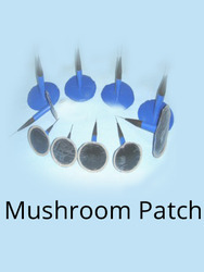 mushroom patch services