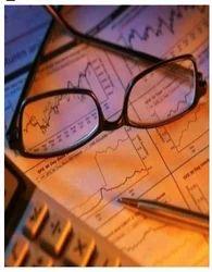 Comprehensive Consultancy