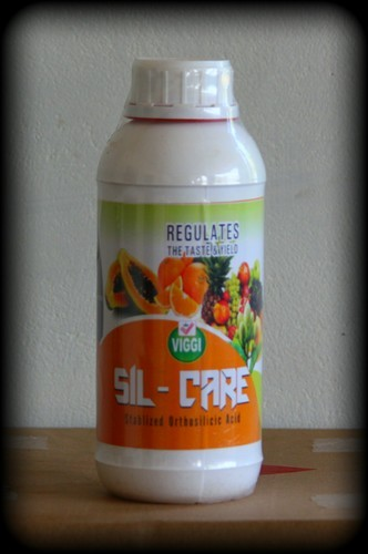 Ortho Silicic Acid Sil Care At Rs 1200 Litre  Silicon -3045
