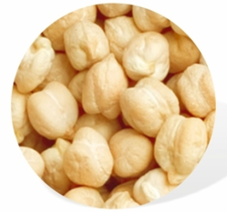 Chickpeas Pulse
