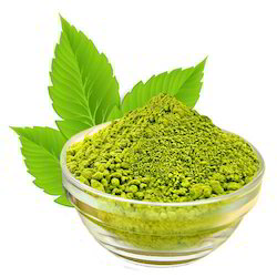 Tulsi Powder Extract, Pack Size: Standard, Packaging Type: Pouch