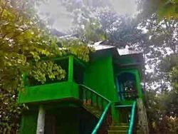 Jungle Camps Tour