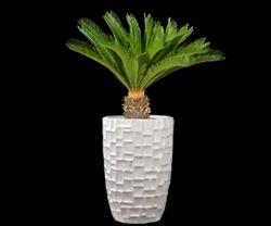 FRP Designer Indoor Planters
