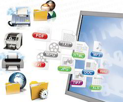 Document Extraction Services
