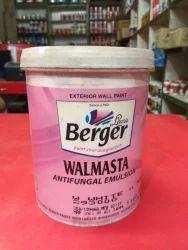 Berger Walmasta Paints