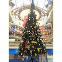 Christmas Tree 35 Feet Height