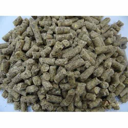 Cattle Pellet - Gold - View Specifications & Details of Cattle Feed