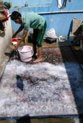 Carpet Cleaning Services Carpet Shampooing Services In