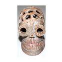 Skull Sculpture