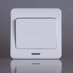 Siemens Modular Switches