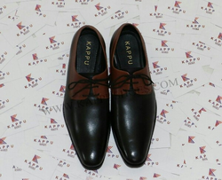 Fancy Leather Shoes