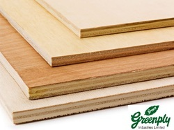 Greenply Commercial Plywood