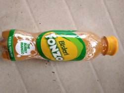 Bisleri Mango Juice