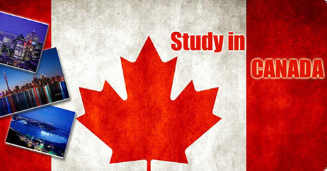 Image result for study in Canada consultants