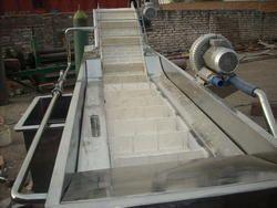 Conveyor Fruit & Vegetable Washer
