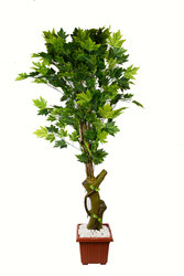 Artificial Green Maple Tree