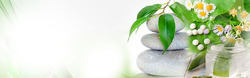 Herbal PCD Pharma Franchise In Karnataka