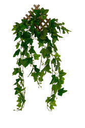 Plastic Artificial Green Wall Hangings