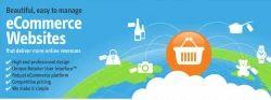 E-Commerce Enabled E Commerce Web Designing Services