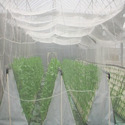 Hdpe Plastic Agriculture Insect Net, For Insects Collecting Nets