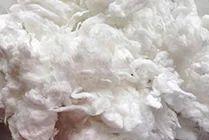 100% Flat Cotton Waste