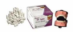 Dental Typho Jaw Set