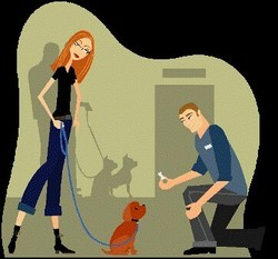 Dog Training Services in Coimbatore