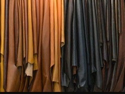 Manufactures & Exporters Of Finished Leather