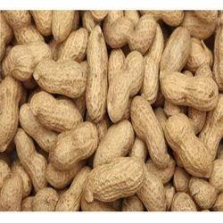 Blanched Peanuts, Packaging Size: 4-10 Kg, Packaging Type: Vacuum Bag