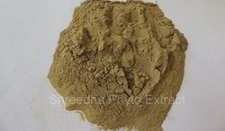 Herbal Extracts Powder Natural