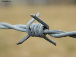 Barbed Wire for Land Fencing