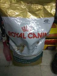 Royal Pet Agencies, Kanpur - Wholesale Trader of Royal Canin