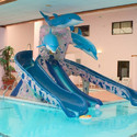 Water Parks Dolphins Kids Pool