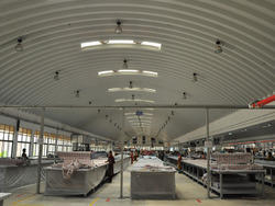 Steel / Stainless Steel Self Supported Roofing System