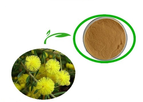 Acacia Rigidula Extract View Specifications Details Of Natural
