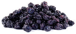 Dried Blueberries Testing Services