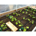 Automatic Micro Irrigation System