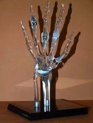 Transparent Hand Model