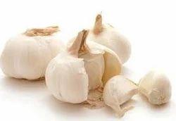 Garlic Extract ( Allium Sativum)