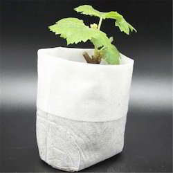 Nursery Poly Grow Bags